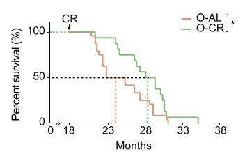 《细胞》:七分饱抗衰老的奥秘都在这了!中科院团队利用单细胞测序,揭示热量限制在分子层面上的影响,免疫、代谢是关键 | 科学大发现